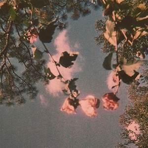 frecklefahce 39 modern is rubbish 39 flower