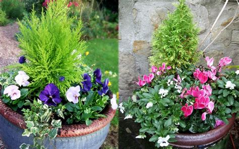 how to make a festive winter planter for outside