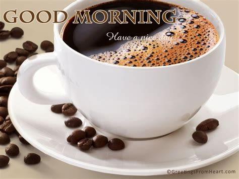 Good Morning Wishes With Tea Pictures, Images Hamilton Beach Coffee Maker Fuse Model 46895 Vietnam Machine Peet's Georgetown Hours Flexbrew Not Pumping Water Discount Single Serve Biggest Exporter
