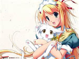 anime cat light images anime with cat kitten hd wallpaper