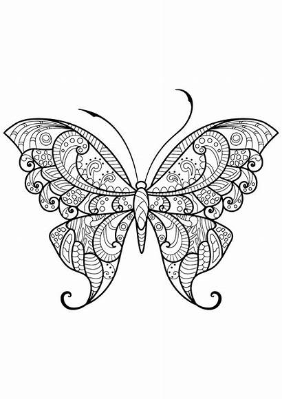 Coloring Butterfly Butterflies Coloriage Pages Papillon Patterns