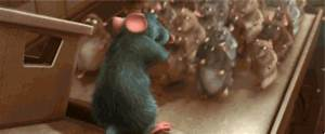 Learn to Love Cooking with Ratatouille   Oh My Disney