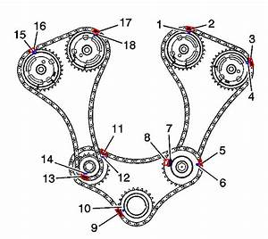Can I Get A Timing Chain Diagram For 2004 Holden Vz