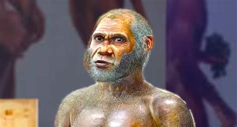 Mysterious Humanoid Species May Have