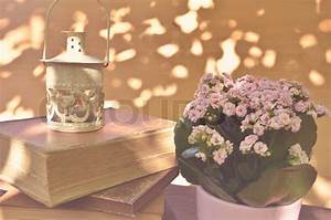 Vintage lantern on old books with flowers | Stock Photo ...