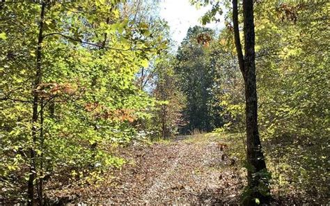 acres indian mound tn property id