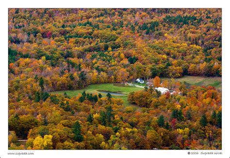 peak fall colors fall colors past peak photoblog
