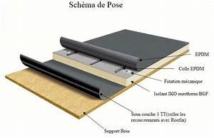 Pose De Shingle : productoverzicht ~ Melissatoandfro.com Idées de Décoration