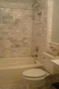 marble subway tiles transitional bathroom