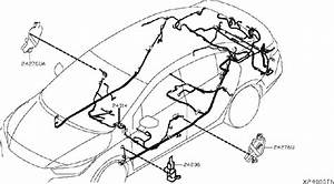 Nissan Sentra Harness Main
