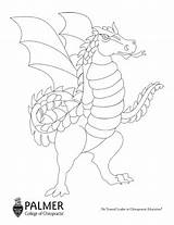 Wyvern Coloring Palmer sketch template