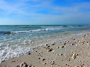honeymoon island state park florida another walk in the With honeymoon state park florida
