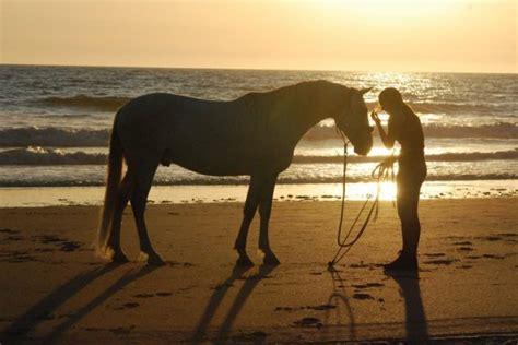 plage au coucher de soleil machado