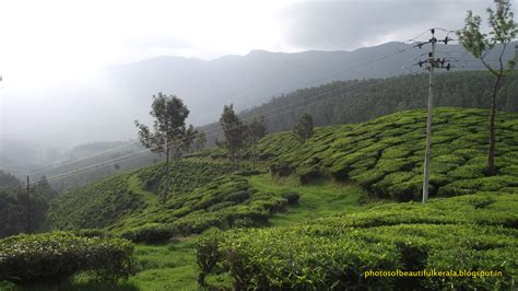 Scenic Munnar Photos Taken From Munnar, Kerala