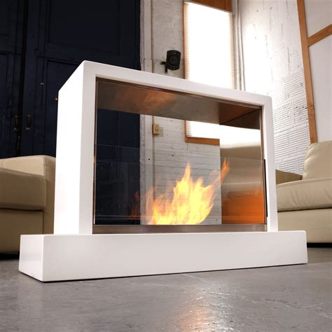 Free Standing Indoor Fireplace Home Design
