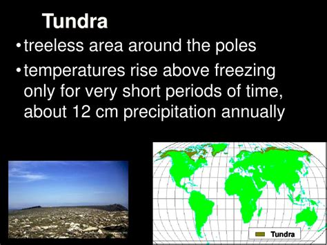 Ppt Biomes Powerpoint Presentation Id98946