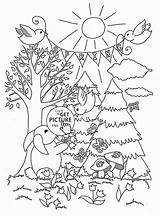 Forest Coloring Pages Spring Adult Printable Seasons Printables Season Tree Wuppsy Colouring Animals Sheets Nature Open Enchanted Forests Lovely Trees sketch template