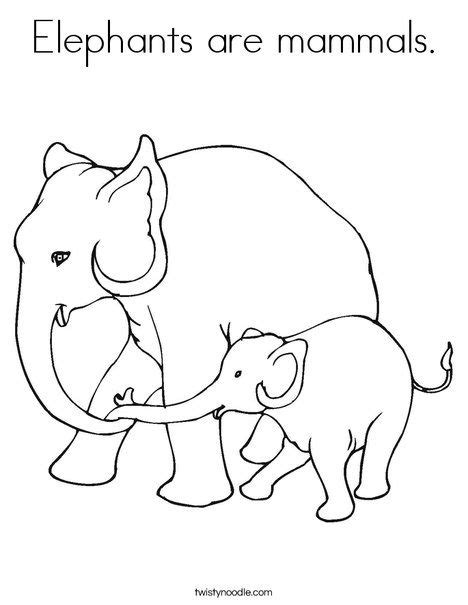 3 letter mammals elephants are mammals coloring page from twistynoodle 28571