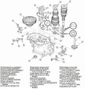 Manual Transmission Disassembly  M  T     Manual    Transmission  Transaxle    Powertrain    Honda