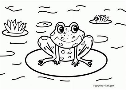 Coloring Pages Frog Nature Sheets Printable Drawing
