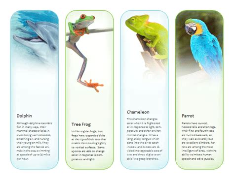 bookmarks tropical animals template microsoft