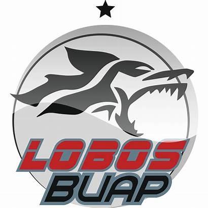 Lobos Buap Football Logos