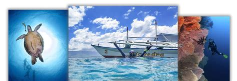 Scuba Diving in the Philippines with Savedra Dive Center
