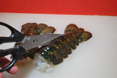 butterfly lobster how to grill lobster tails savoryreviews