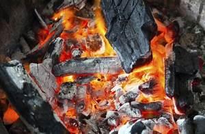 Holzasche Im Garten Verwenden : holzasche im garten als d nger und kompostierer verwenden myhammer magazin ~ Markanthonyermac.com Haus und Dekorationen