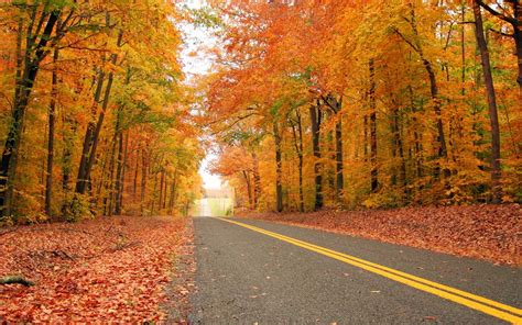 fall propane checklist