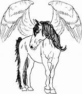 Pegasus Coloring Horse Pages Flying Drawing Draw Step Baby Printable Adults Adult Drawings Realistic Cute Sheet Unique Template Getdrawings Print sketch template