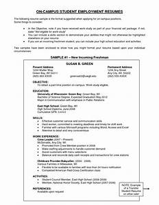 examples of objectives on a resume example resume With career objective for resume