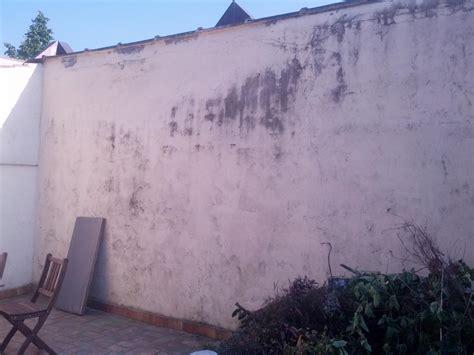 peinture pour mur exterieur raffraichir mur exterieur cour photo