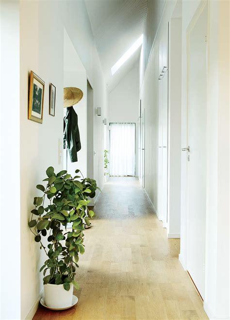 de la vegetation dans  long couloir entree  couloir