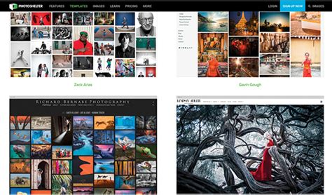 website hosts  photography websites