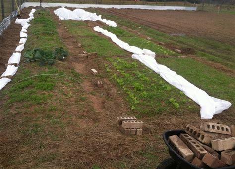 craigslist houston farm and garden tofga conference recap organic farmers and