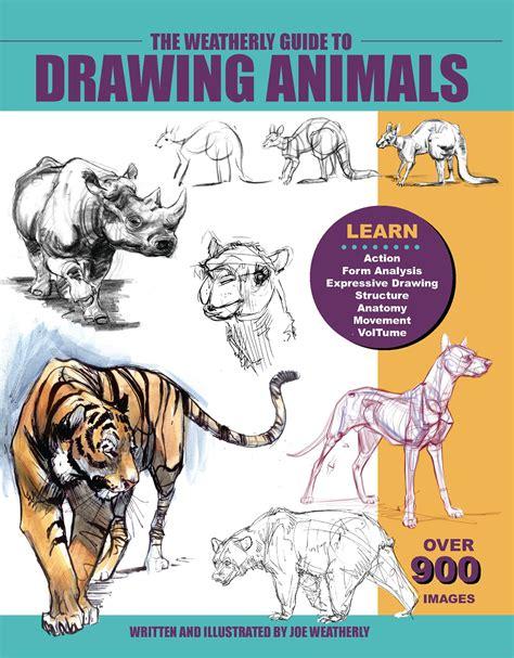 animal drawing books  getdrawingscom