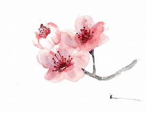 Cherry Blossom Flower Watercolor Art Print Painting ...