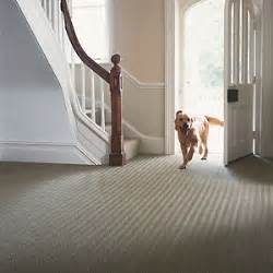 Best Carpet For Hallway And Stairs by New Carpet For Your Hall And Staircase Really Can Help To