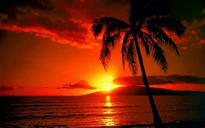 Sunset Desktop Scene Wallpapers Backgrounds Natural Wallpapersafari