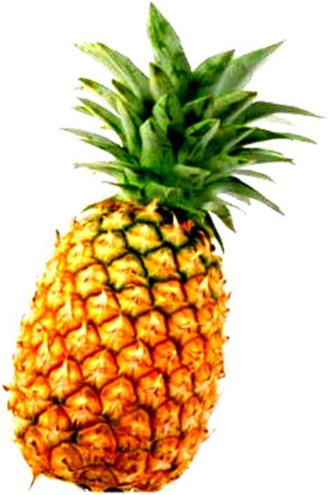 image pineapplepng ao  exorcist wiki fandom