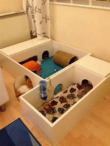 Meerschweinchen Gehege Ikea : ikea hack guinea pig cage meerschweinchen hasen k fig meerschweinchen gehege und ~ Orissabook.com Haus und Dekorationen