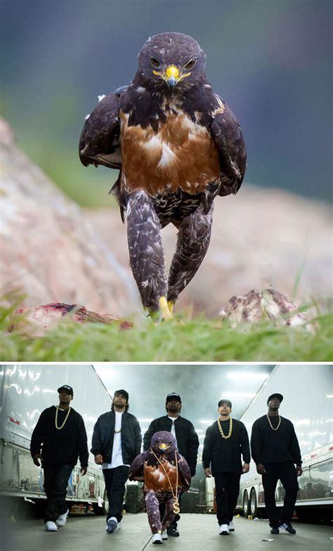 photoshop battles ever greatest winners