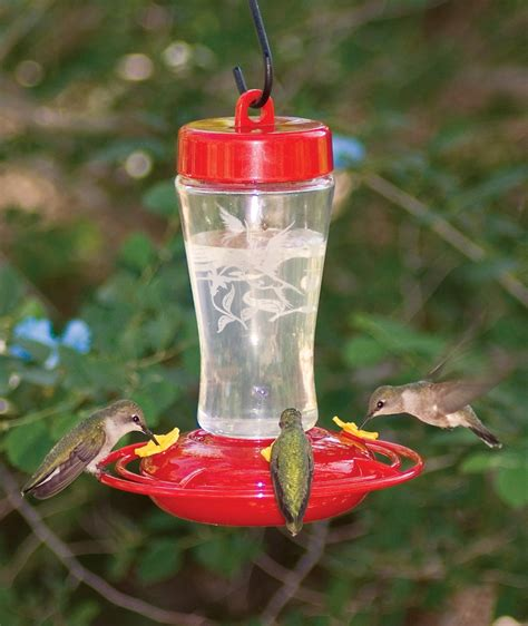 homestead etched glass hummingbird feeder 12 oz 3910