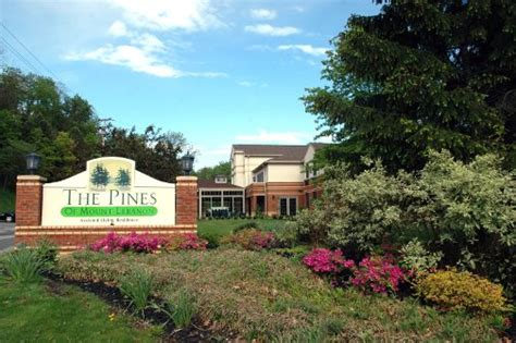 The Pines Of Mount Lebanon  Pittsburgh Assisted Living. Open Stock Trading Account Health Care Grant. Best Ways To Advertise Your Business. University Of Washington Admissions. Midwives Portland Oregon Free Fax Machine Use. Identity Theft Credit Score Rollover To Ira. Erbium Doped Fiber Amplifier. Life Christian University Tampa. Lighting And Power Solutions