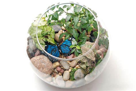 Indoor Gardening Project For Kids