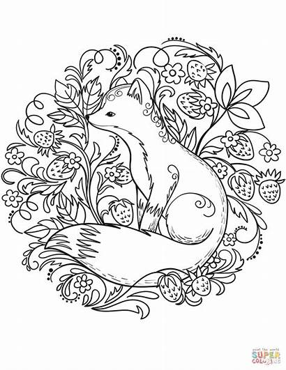 Coloring Fox Pages Animals Valentine Forest Printable