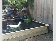 How to Build a NoDig Backyard Pond for Under $70 Hawk Hill