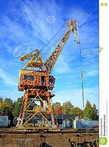 Cran As Giraffe Stock Image