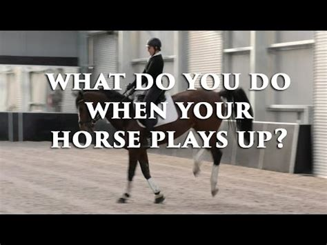 What Do You Do When Your Horse Plays Up?  Fearless Friday
